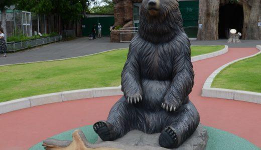 東武動物公園のヒグマの森でヒグマに接近した話