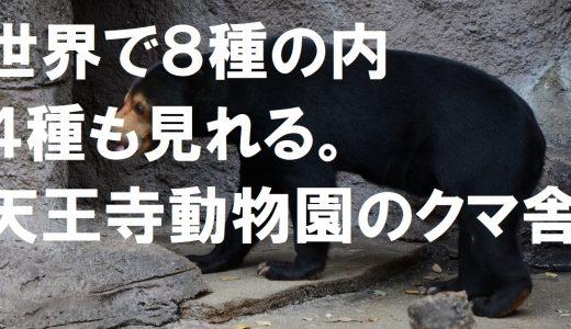 世界で8種の内、4種も見れる。天王寺動物園のクマ舎がおすすめ。